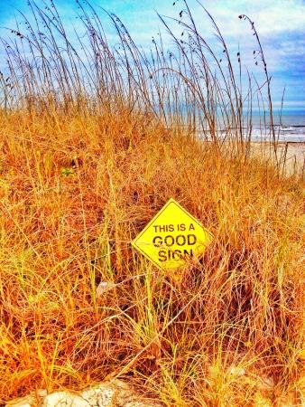 Good Sign Hilton Head Dunes